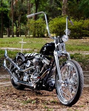 IMG 0002 Doin Time Chopper